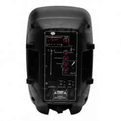 Bafle Profesional Con Entradas Usb/sd Conecta A Bluetooth