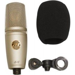 Microfono Profesional De Estudio Con Estuche De Viaje Gratis